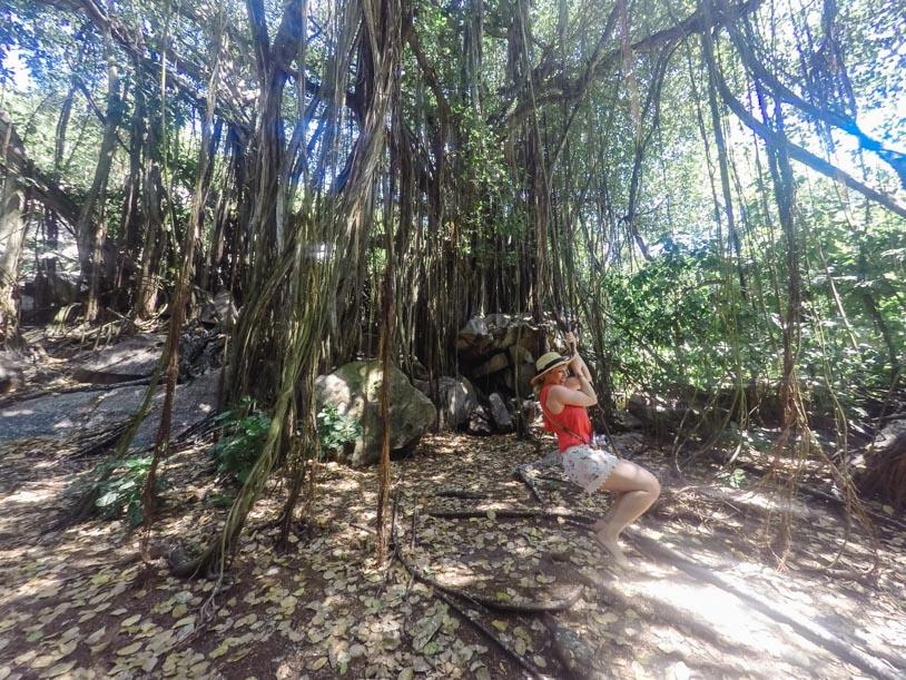 Inselhopping Seychellen